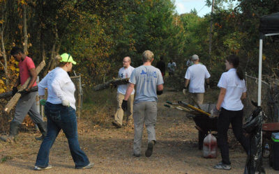 Next Clean Up Day Announced: Saturday, Nov 19, 2016